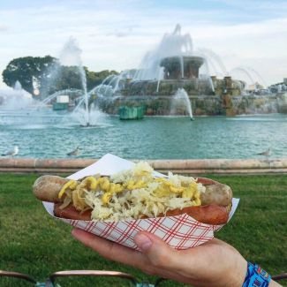 A Comprehensive Guide to the Food of Lollapalooza