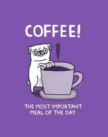 morning-coffee-40-photos-275