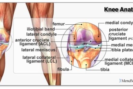Interior Side Knee Pain Free Interior Design Mir Detok