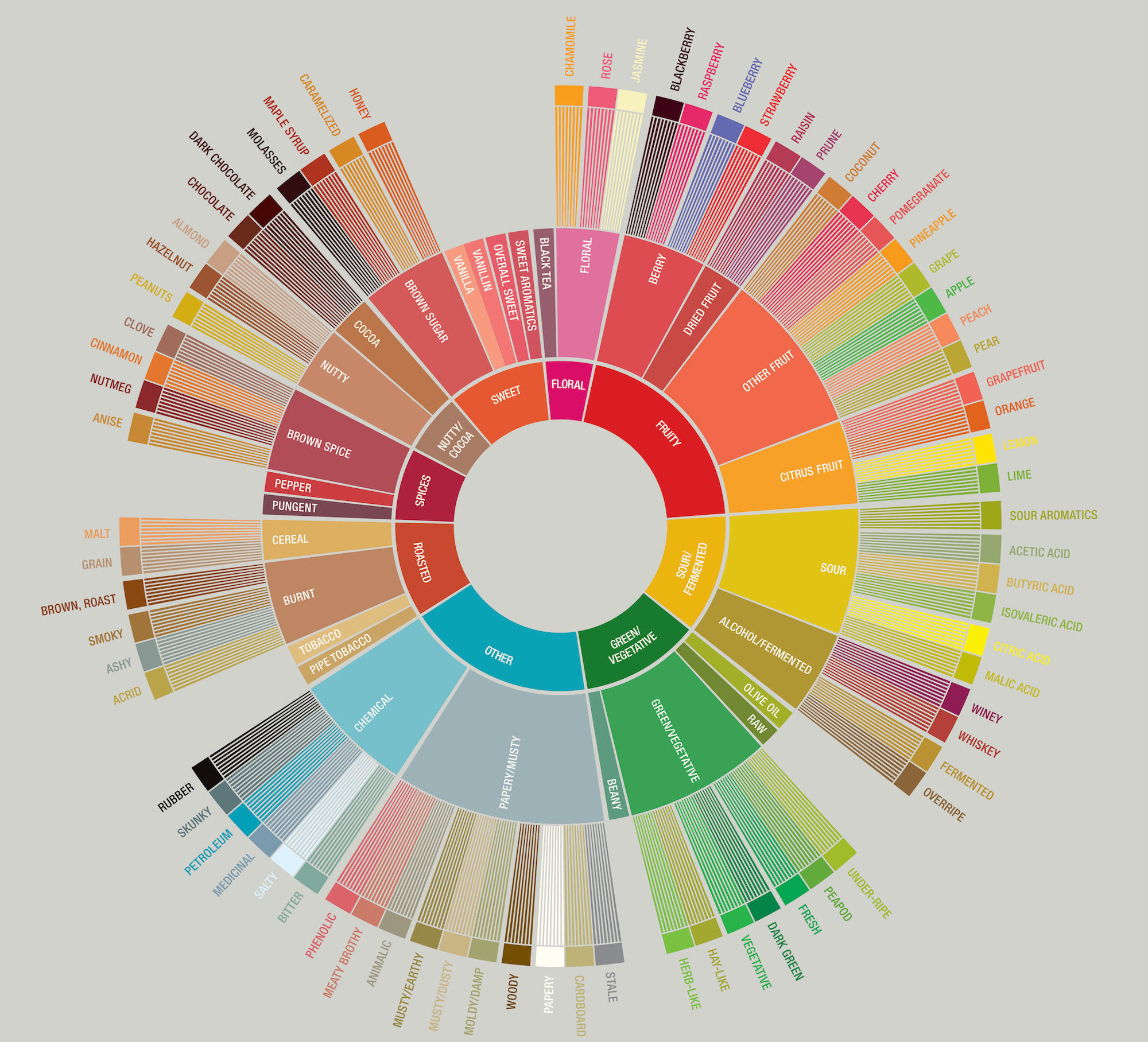 Specialty Coffee Association's Coffee Taster's Flavor Wheel is a colorful guide to the various flavors one might find when tasting coffee