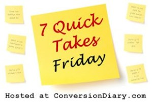 Seven Quick Takes with a New Baby (Vol. 12)