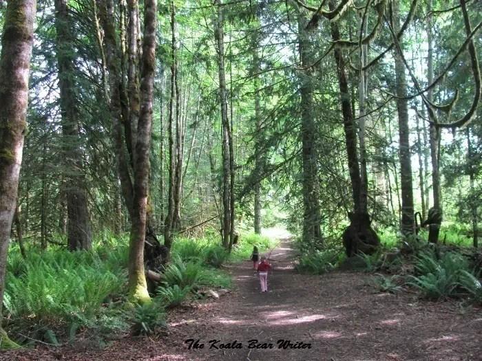 Hiking at Rondalyn Resort
