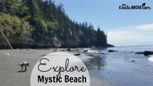 Explore Mystic Beach