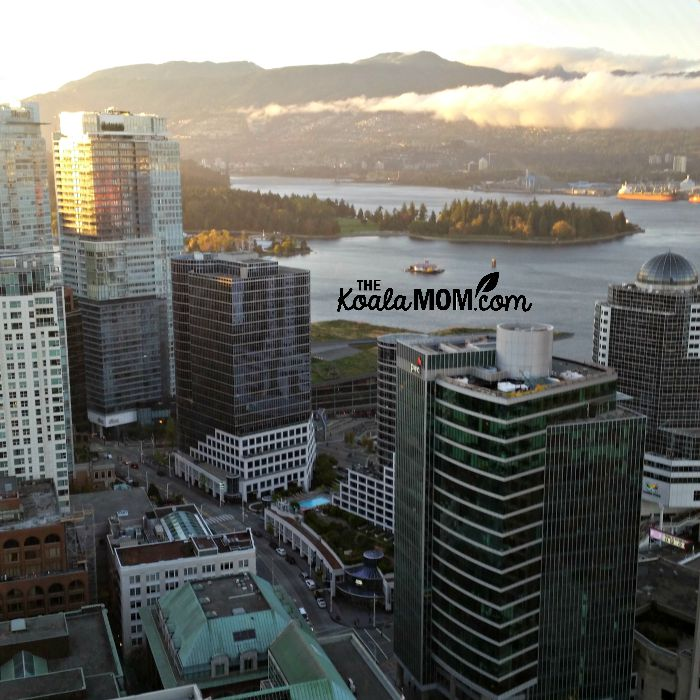 Looking down at Stanley Park from the Vancouver Lookout