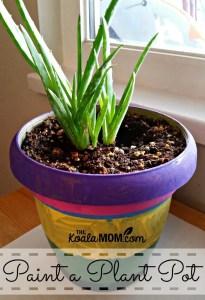 Paint a Plant Pot