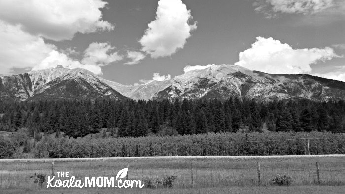 Road Trip Memories: mountain scenery near Canmore, Alberta
