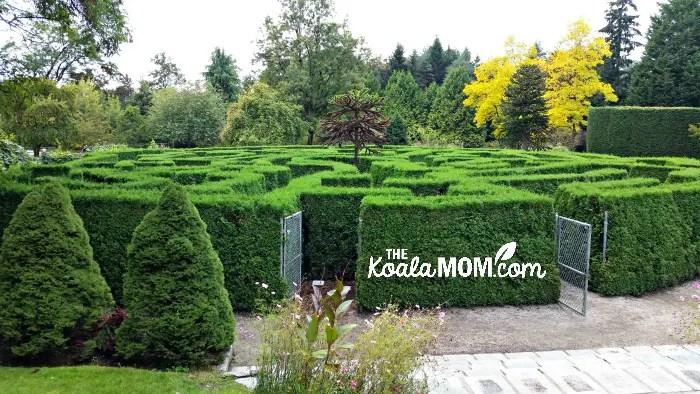 The maze at VanDusen Gardens in Vancouver