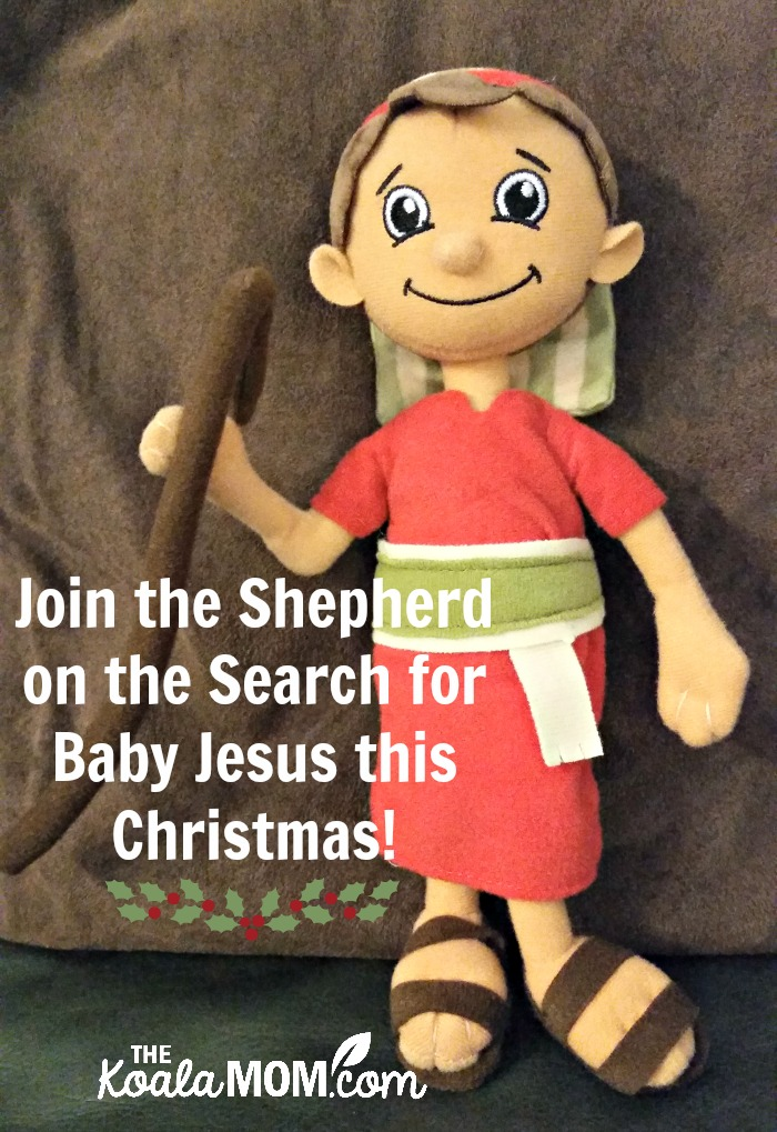 Davy, our Shepherd on the Search for Jesus this Christmas