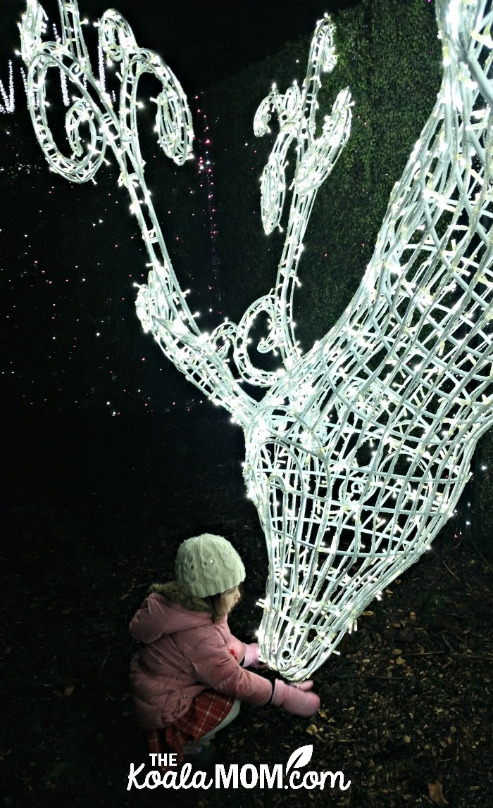Jade petting the light reindeer at Enchant Christmas - one of our favourite family Christmas activities in Vancouver