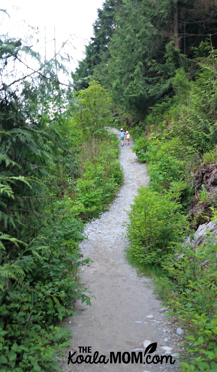 The trail along the west side of Buntzen Lake