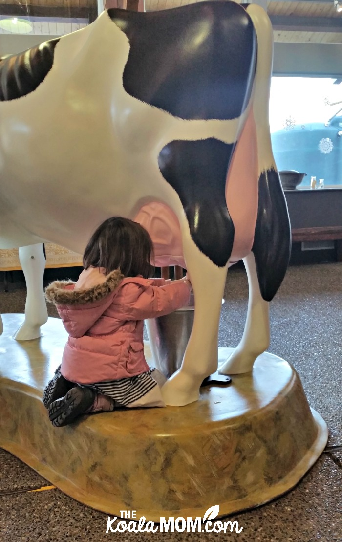 Jade tries to milk a (plastic) cow