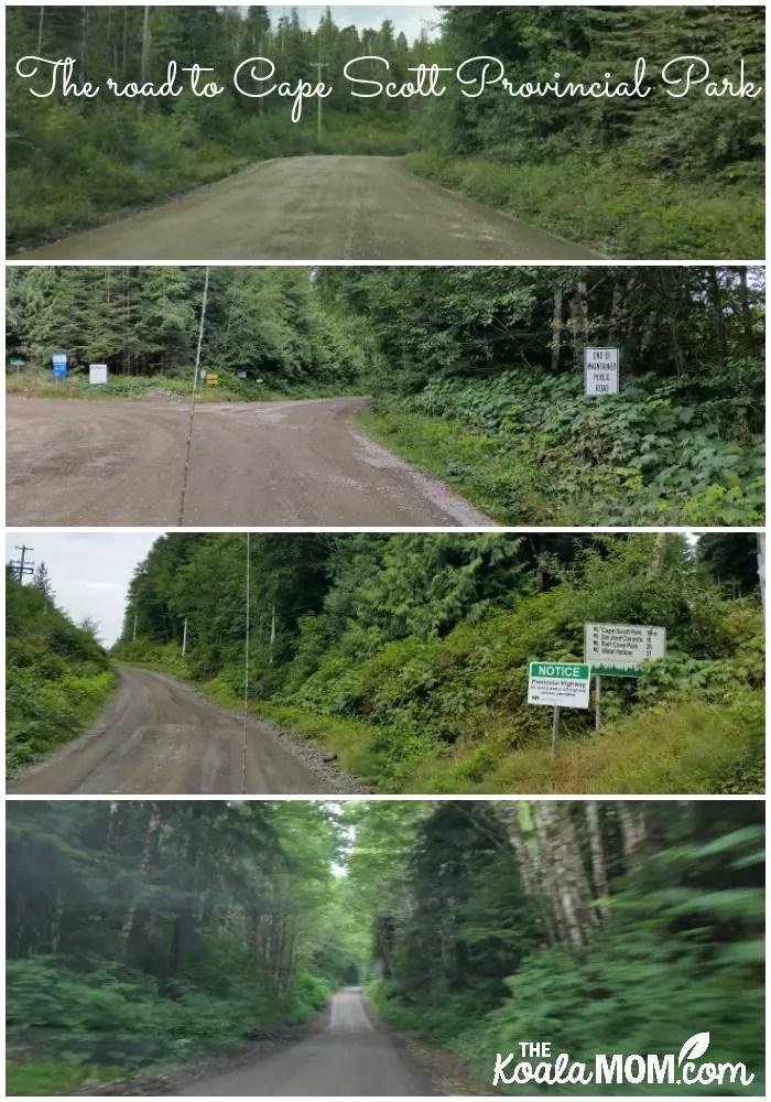 The road to Cape Scott Provincial Park