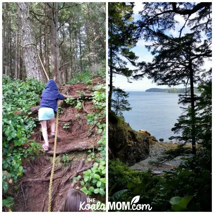 Hiking the Tex Lyon Trail near Port Hardy, BC
