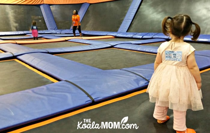 Toddler watching her sister bounce on the trampolines at SkyZone.