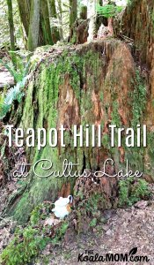 Hiking the Teapot Hill Trail in Cultus Lake Provincial Park
