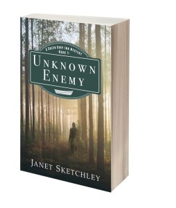 Unknown Enemy (A Green Dory Inn Mystery) by Janet Sketchley