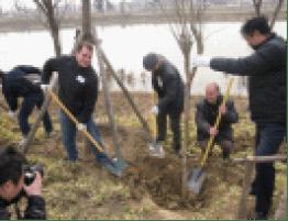 Tree Planting in Jining