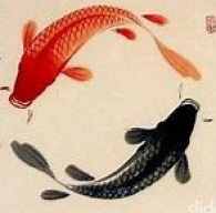 AB fishchart