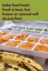 Easy baby food hack. Fresh is best, but frozen or canned will do just fine.