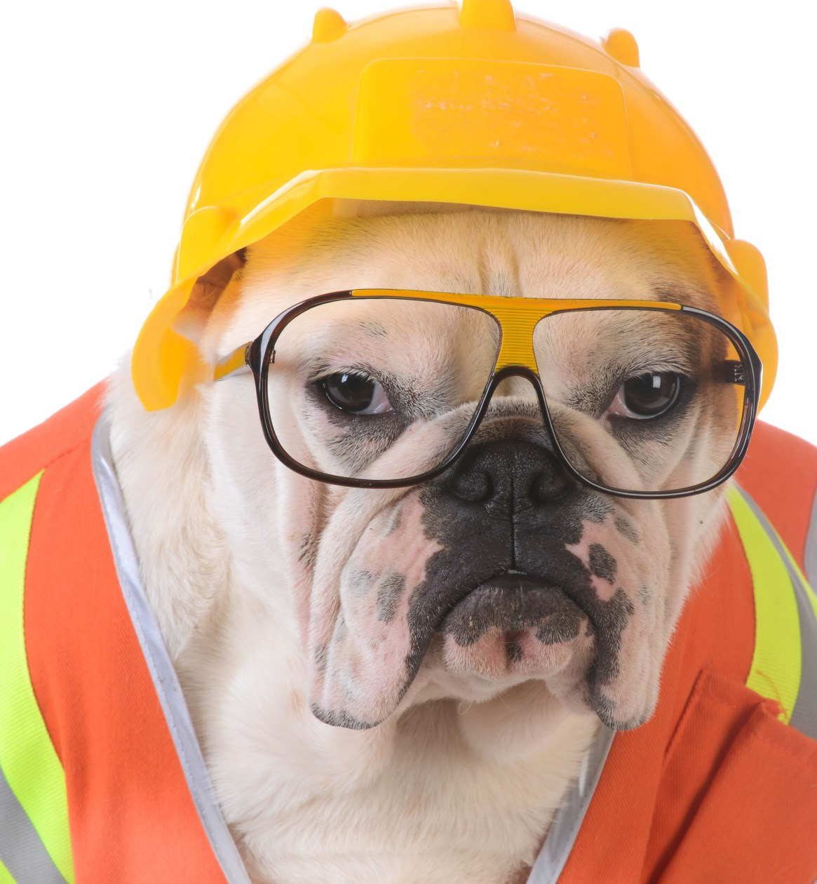 OSHA Safety Officer