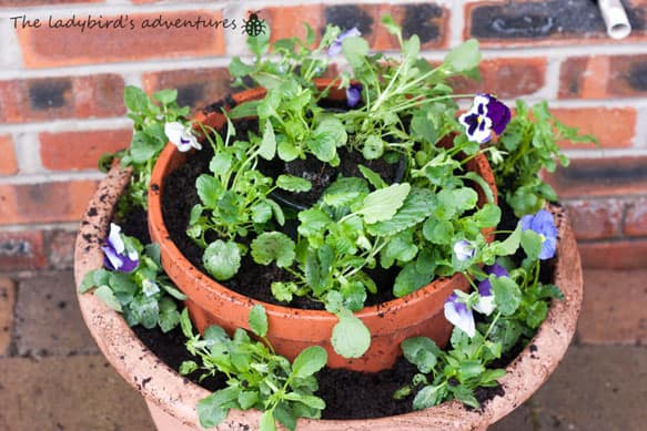 Gardening,  children's books and big girls beds #Little loves