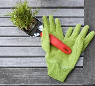 Battle-Of-The-Bulge, Budget Style: Gardening To Lose Weight, Part II!