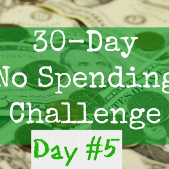 June No-Spend Month Challenge: Day 6 (Rain-Check Shopping)