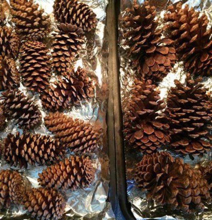 DIY Holiday Scented Pine Cones