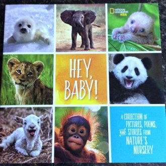 Book Review & Giveaway: Nat Geo Kids: Hey, Baby!