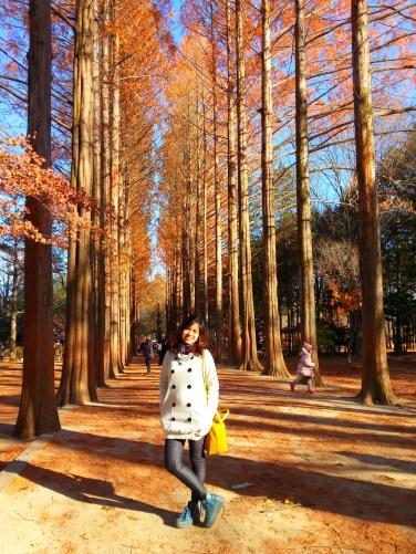 Autumn in my heart ;)