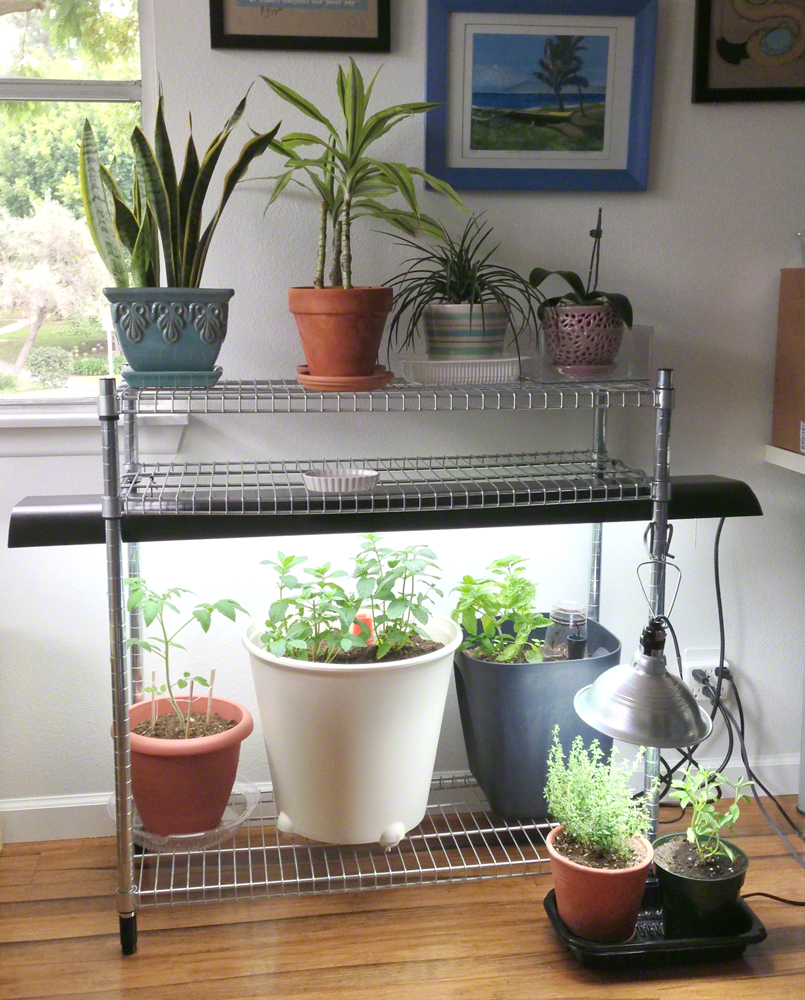 Ikea Indoor Garden: My Indoor Garden For Under $100 With IKEA Stuff