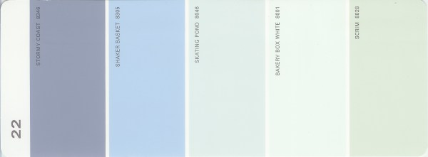 Martha Stewart Paint 5-Color Palette Card #22
