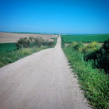 First endless road through the fields