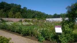 The walled garden left as you enter the gate ....
