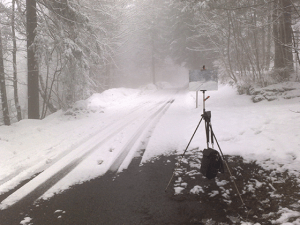 Dalessio snow photo
