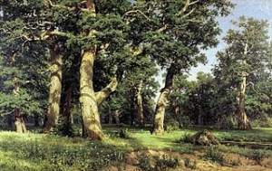 Shishkin 2- Oaks_ Evening-Examples of Tree perspective-Trees