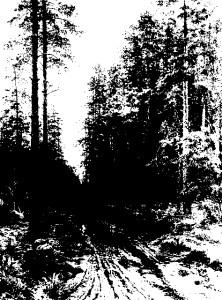 Shishkin forest dusk notan 1