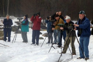Bird-Watchers-Winter-Sized