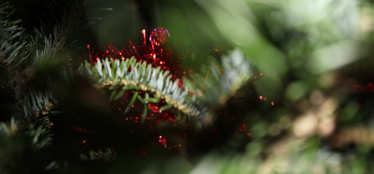 It's more than just the smell: Real Christmas trees are more favorable than artificial ones