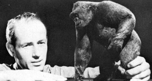 Mighty Joe Young Harryhausen