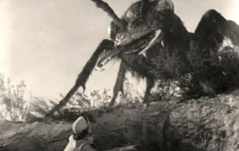 them-ants