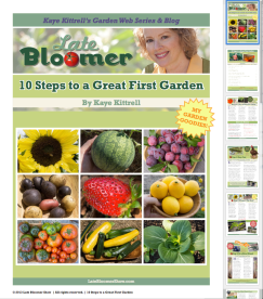 10 Steps to a Great First Garden