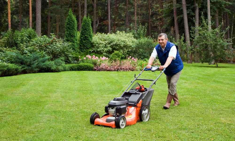 Lawn Care Business Plan - The Lawn Solutions