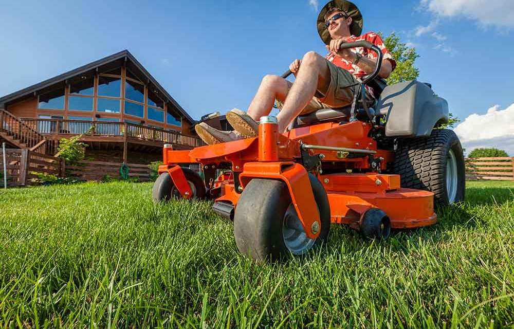 Lawn Care 101 – Essential learning for those starting out