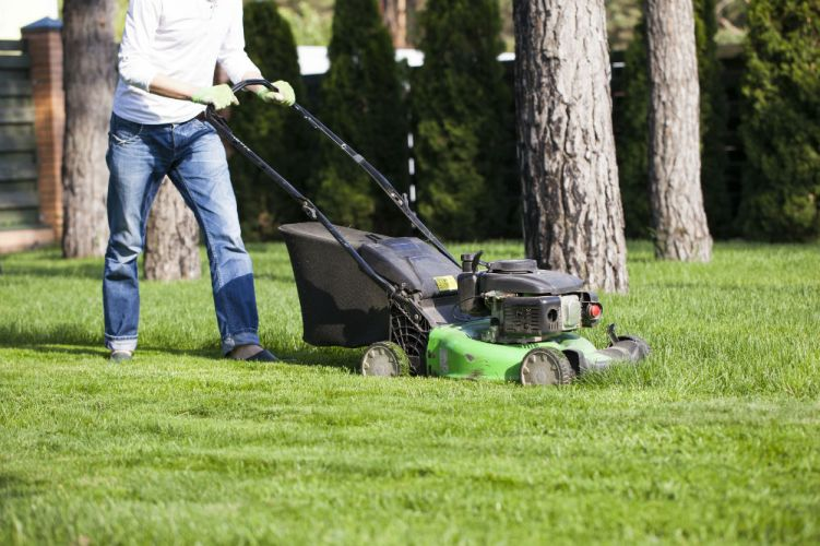 How Long Do Lawn Mowers Last?