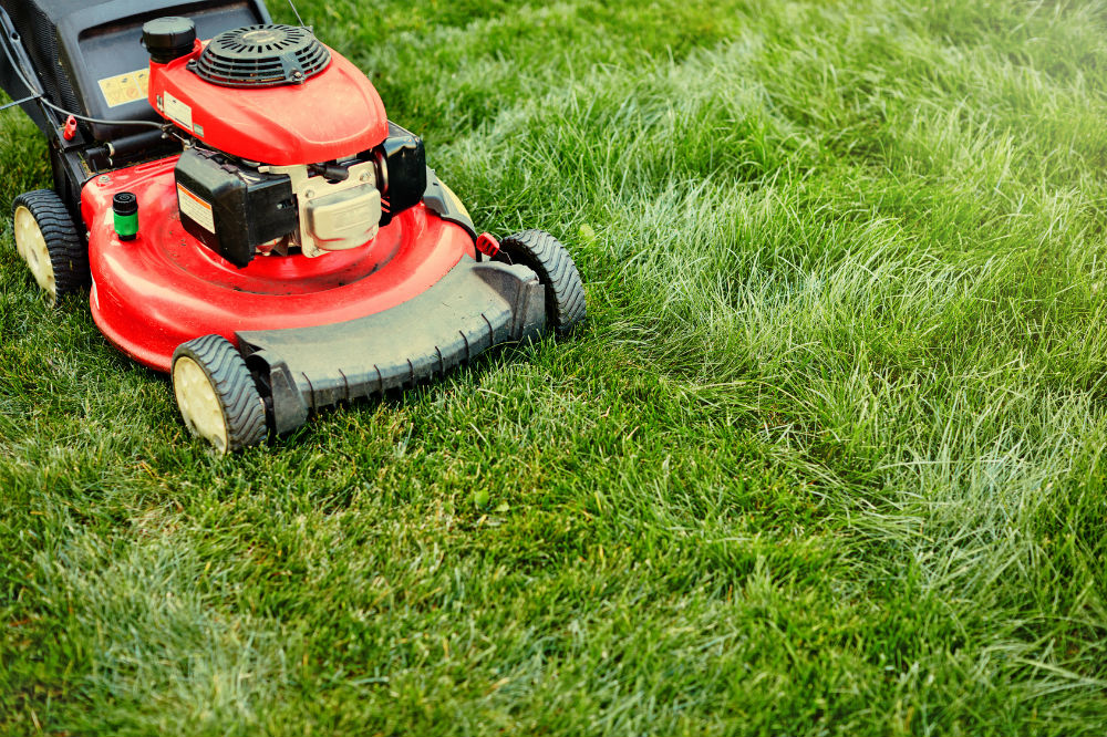 best mower for lawn care business - Etame.mibawa.co