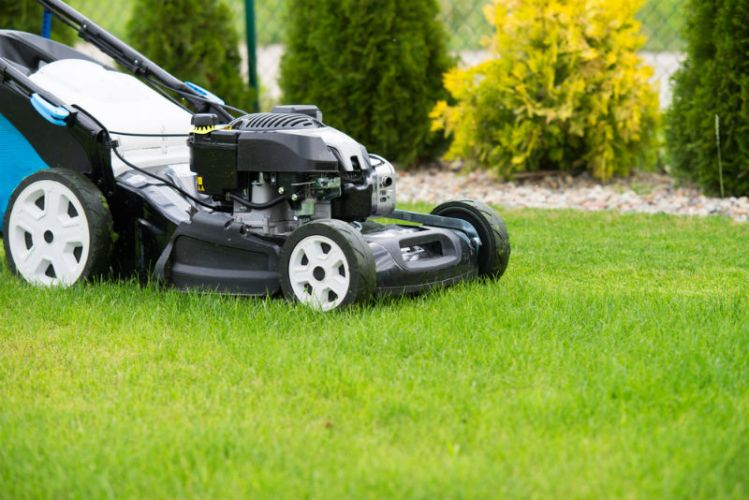 best commercial lawn mowers reviews