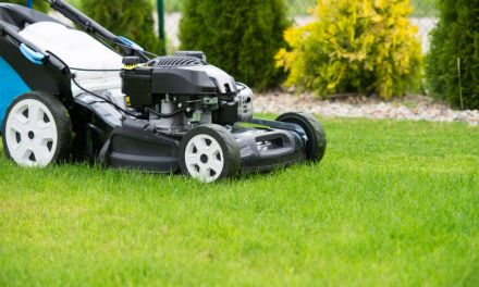 Best Commercial Push Mowers Reviews