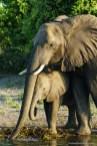 Botswana Blog-77