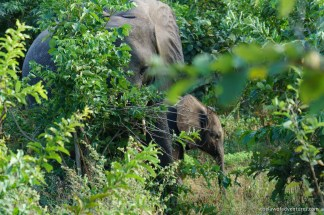 Botswana Blog-86